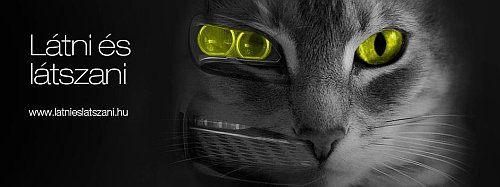Látni és látszani közlekedésbiztonsági kampány, látásellenőrzés, látásvizsgálat, szemvizsgálat